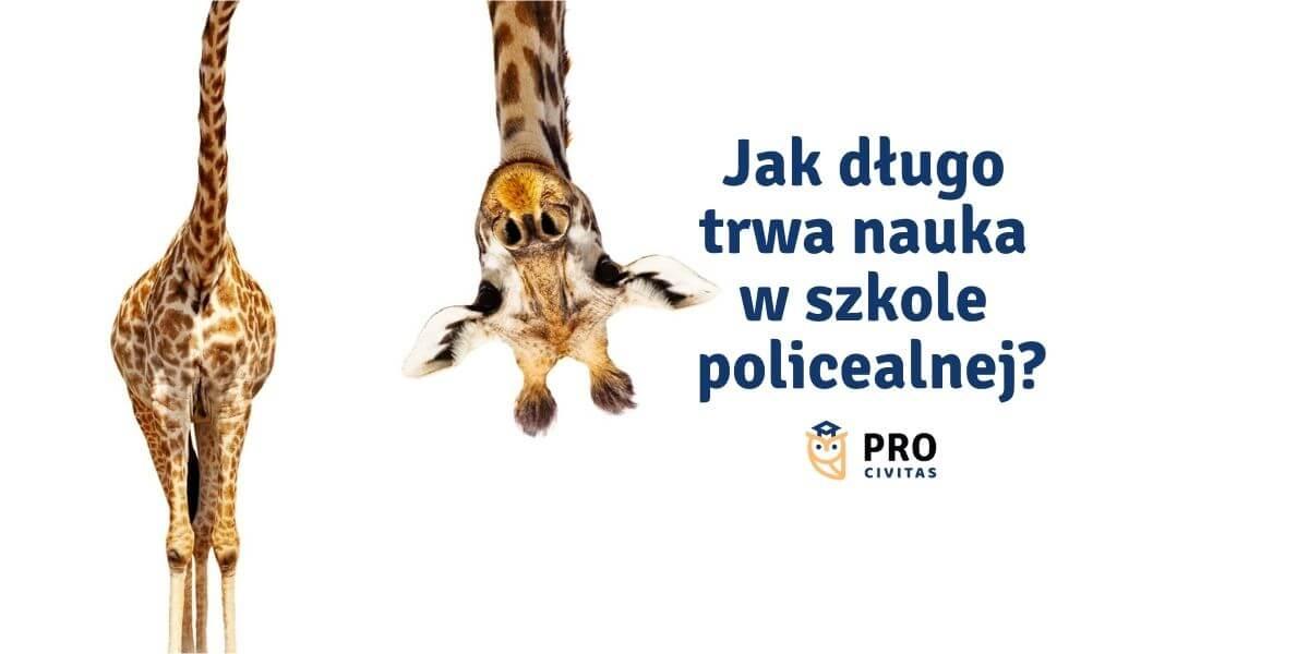 Ile trwa nauka w Szkole Policealnej PRO Civitas – sprawdź ile czasu zainwestujesz, by zdobyć zawód - PRO Civitas